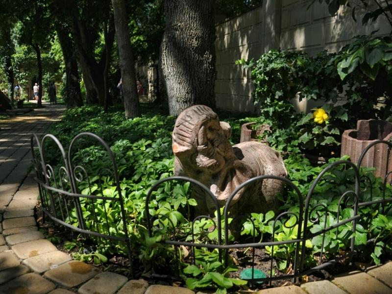 Слонёнок в Старом парке Кабардинки
