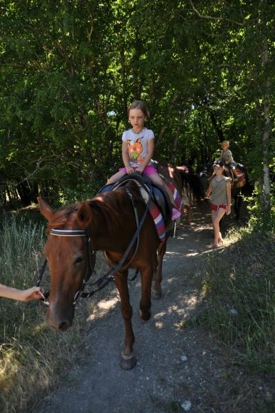 Едем на лошадках по лесу