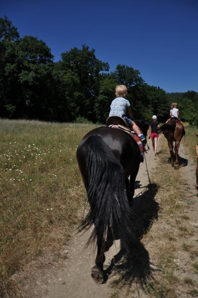 Тёмка в арьегарде конной цепи