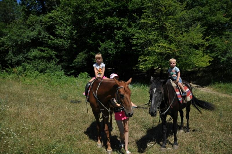 Фотосессия на лошадях