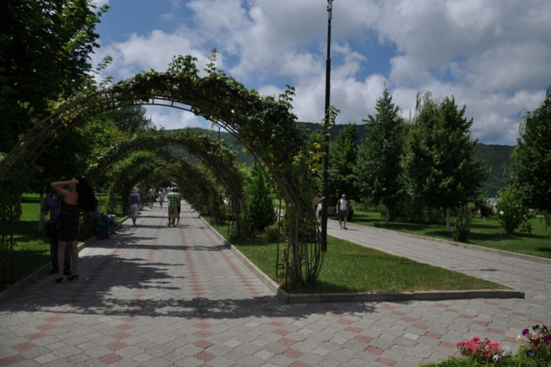 Аллея в парке Абрау-Дюрсо