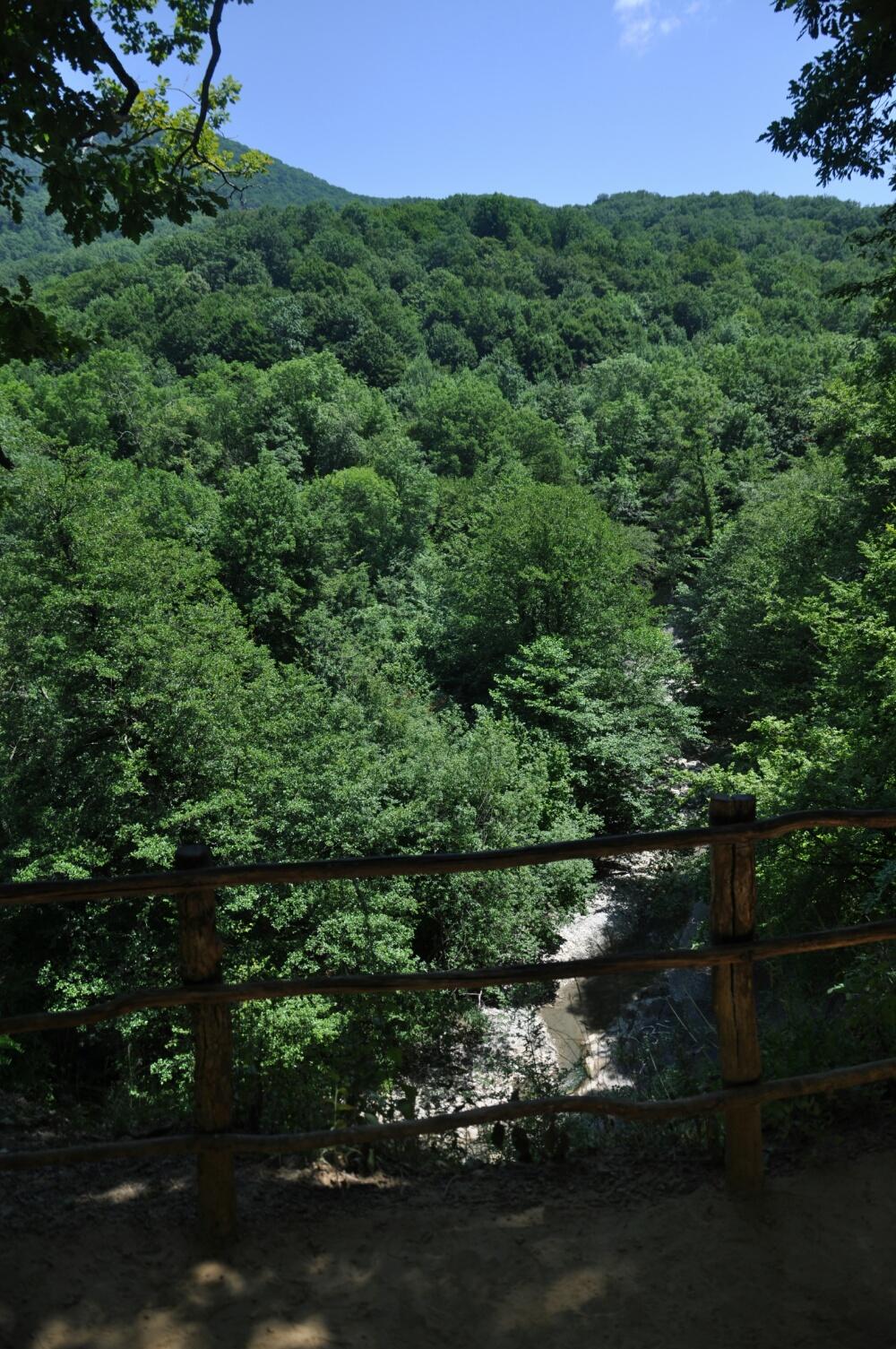 Русло реки Жане в ущелье