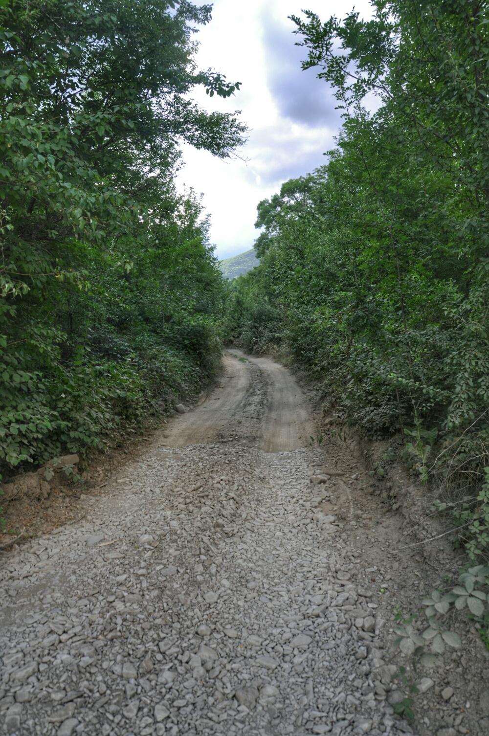 Дорога вдоль реки Пшада