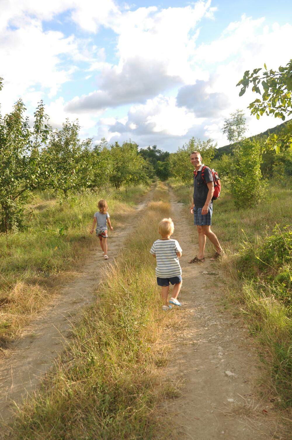 Идём по яблоневому саду в долине реки Пшада
