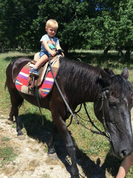 Тёмка катается на лошадке в Адербиевке