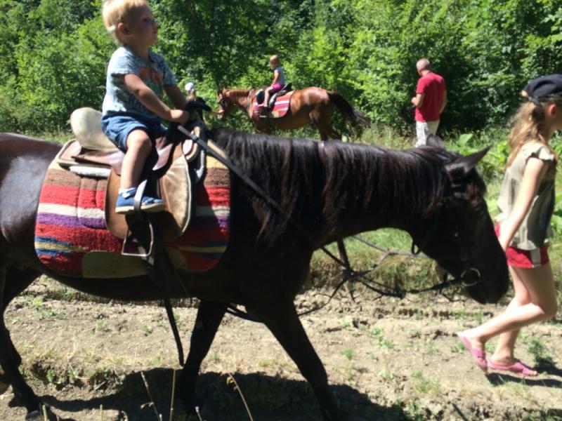 Наварачиваем круги на лошадках в Адербиевке