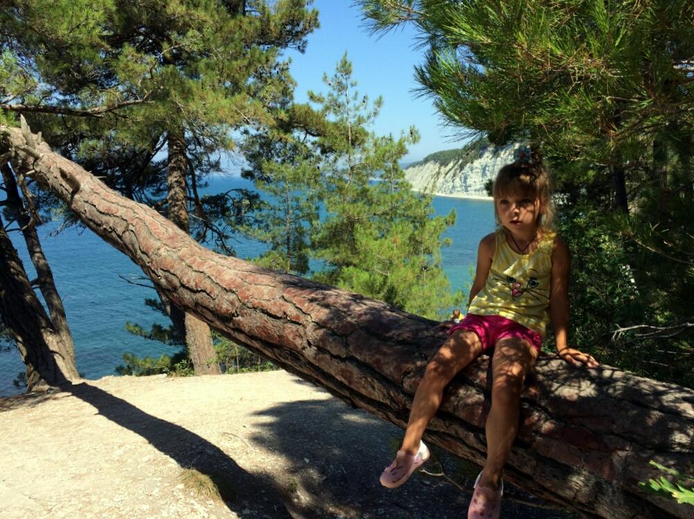 На поваленном дереве во время спуска к Голубой бездне