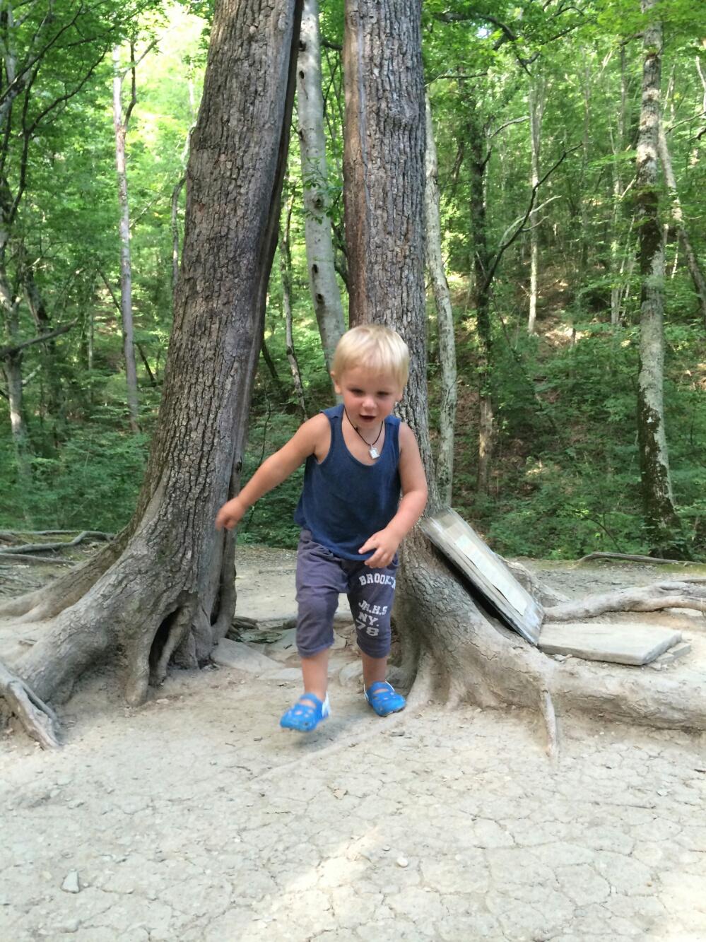 Тёма пробегает в расщелине ствола дерева Желаний
