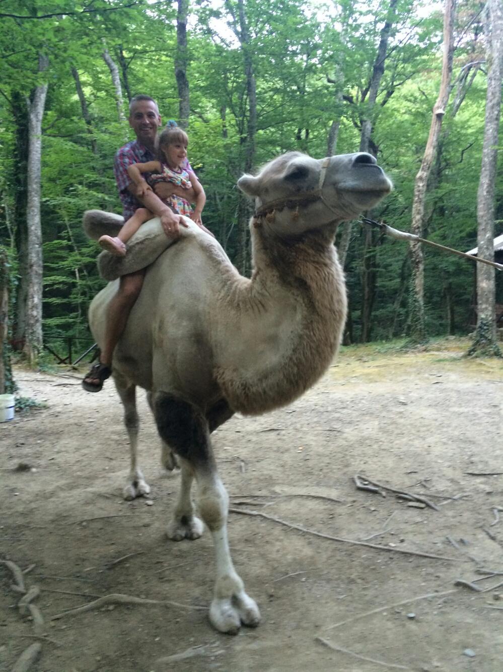 Катаемся с папой на верблюде Ваське