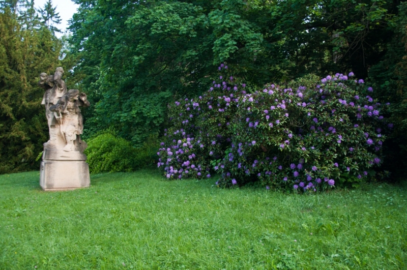 Парк в замке Конопиште