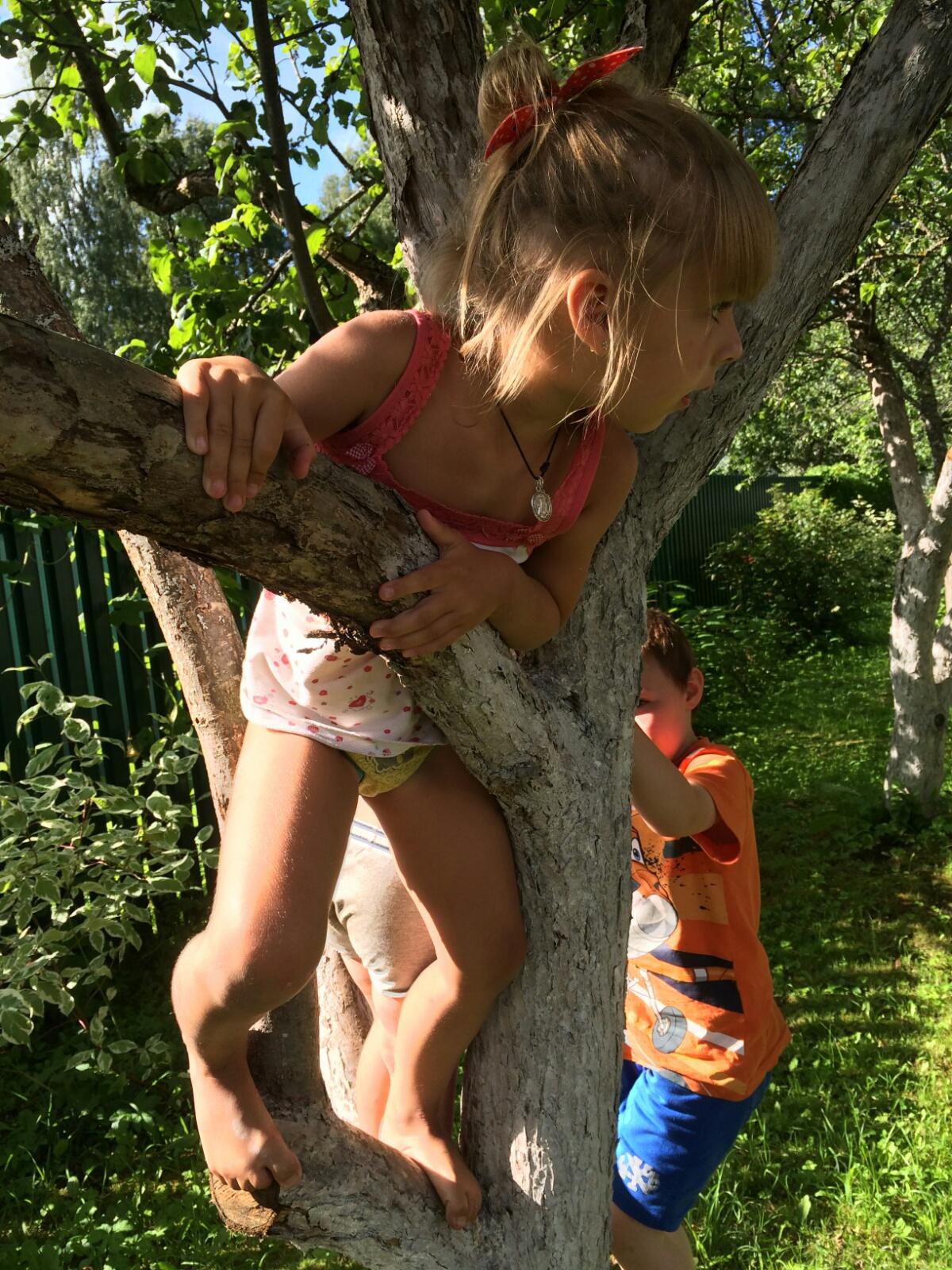Лазаем по деревьям