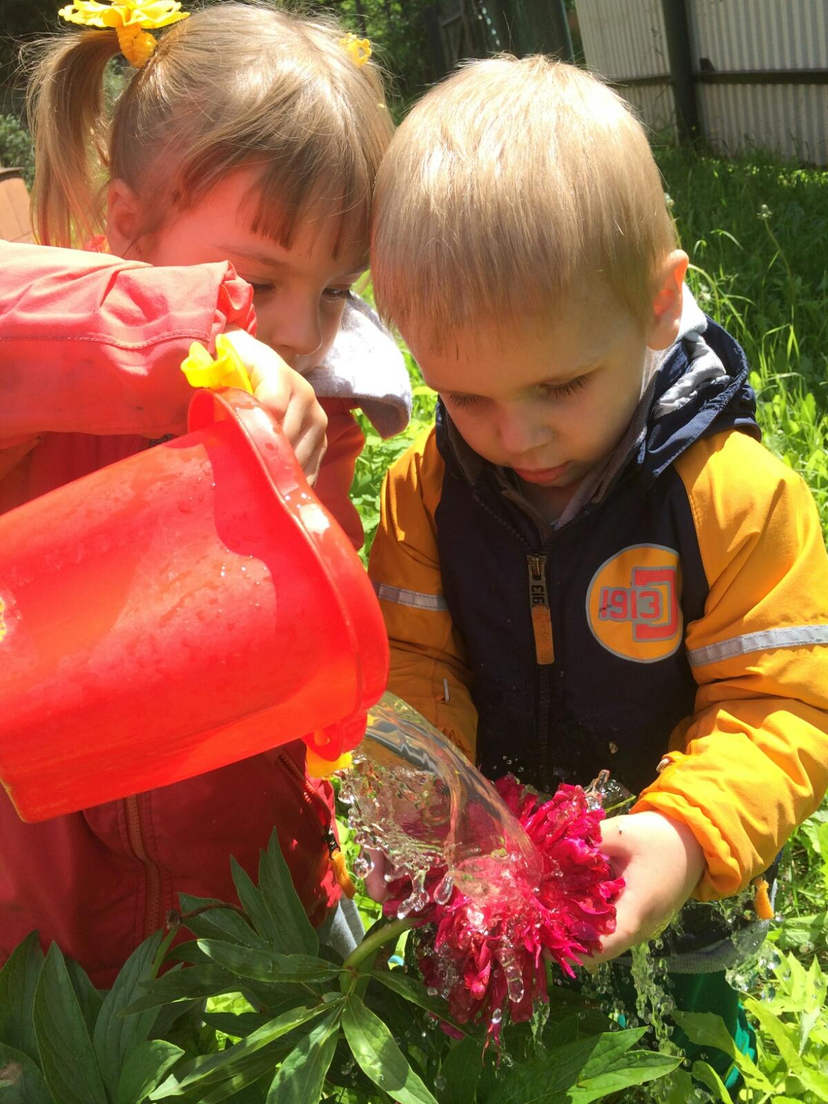 Поливаем цветочки