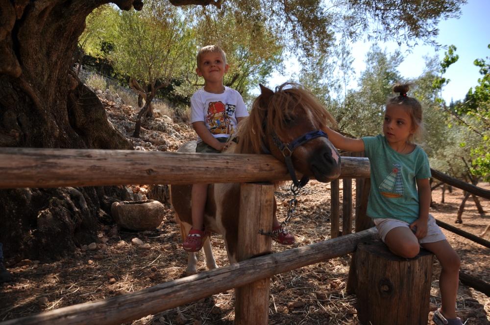 Тёмка восседает на пони в парке Аскос