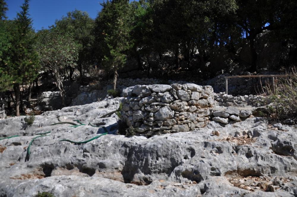 Четырёхсотлетний кололец-водосборник в парке Askos