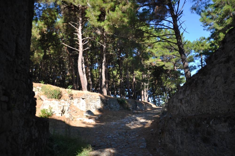 Начало маршрутов по территории крепости Бохали