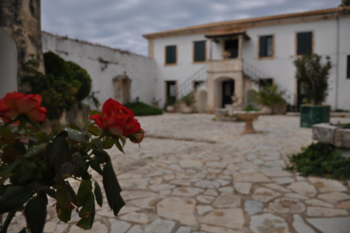 Розы на площади монастыря Святого Георгия Кремнона