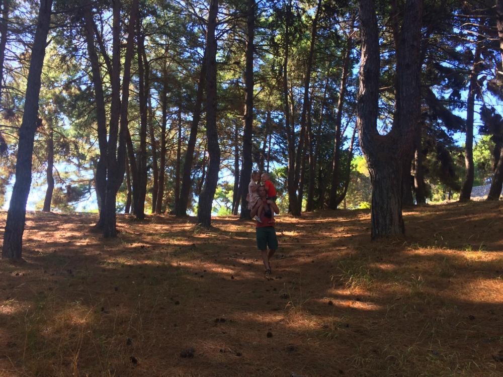 Гуляем по парку Бохали