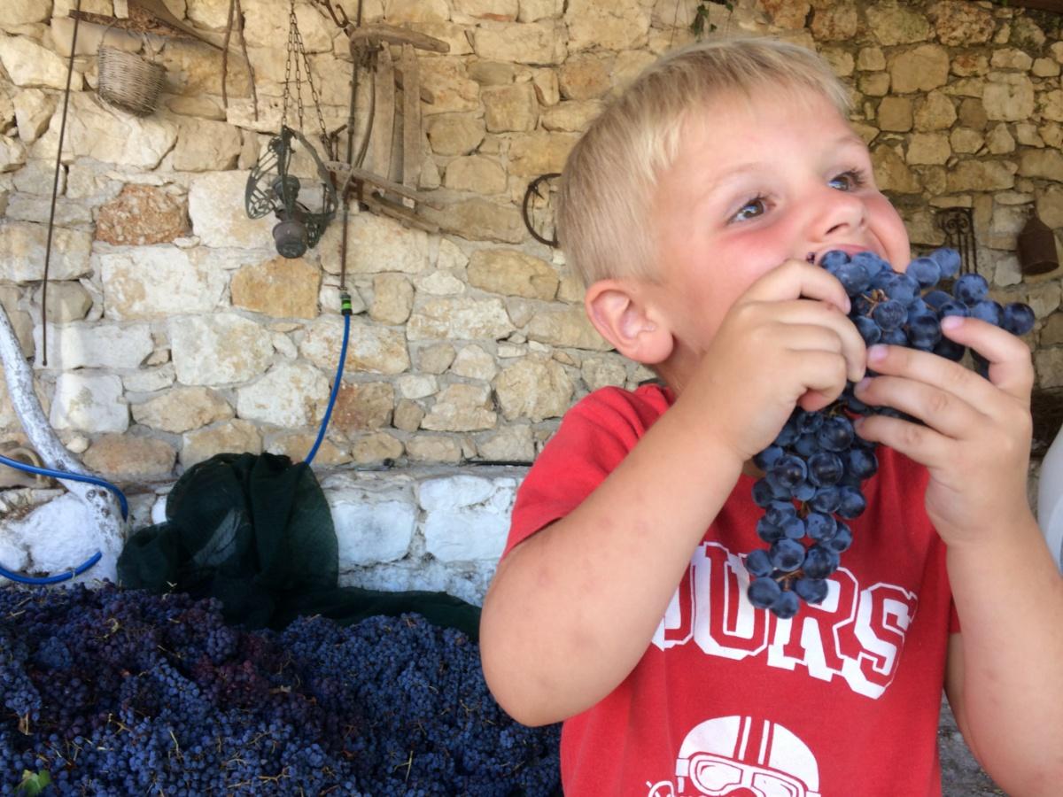 Тёмка поедает виноград
