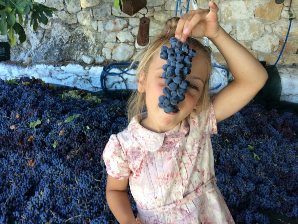 С виноградной лозой