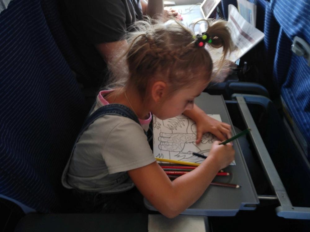 Творчество в полёте