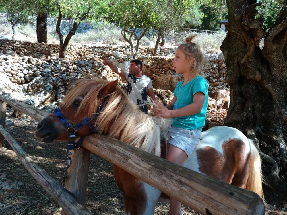 Сижу на пони в парке Аскос