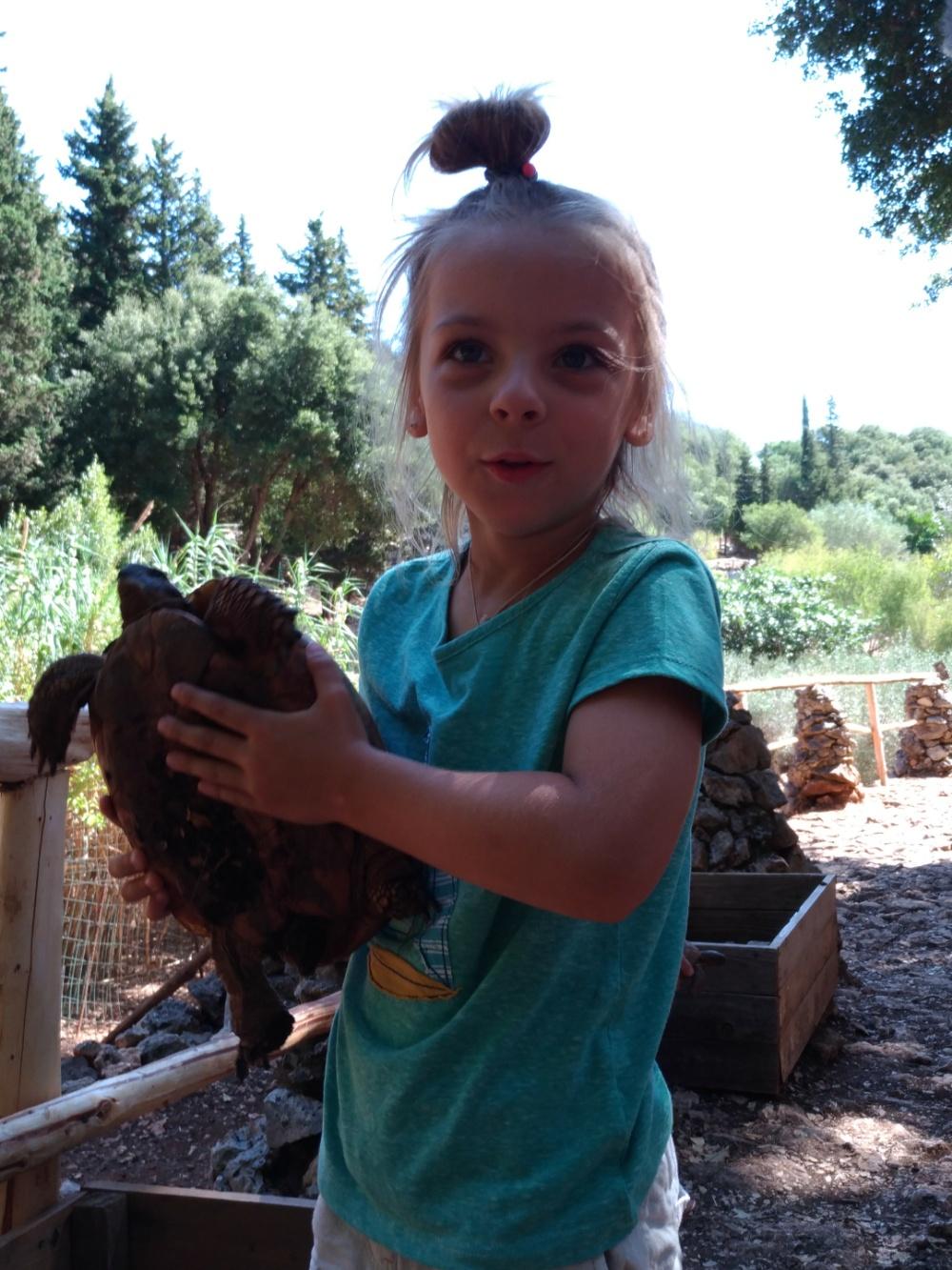 С черепашкой в парке Askos