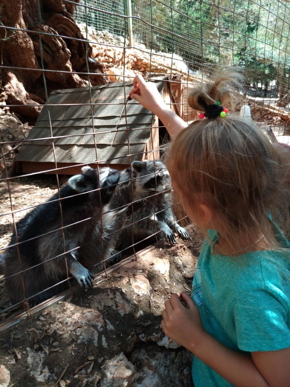 Кормим енльиков в парке Аскос