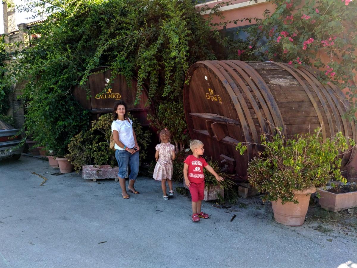 Винные бочки рядом с винотерией Калинико