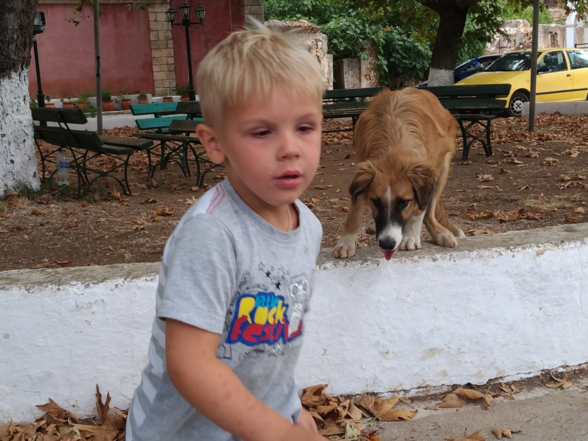 Тёмка убегает от собаки