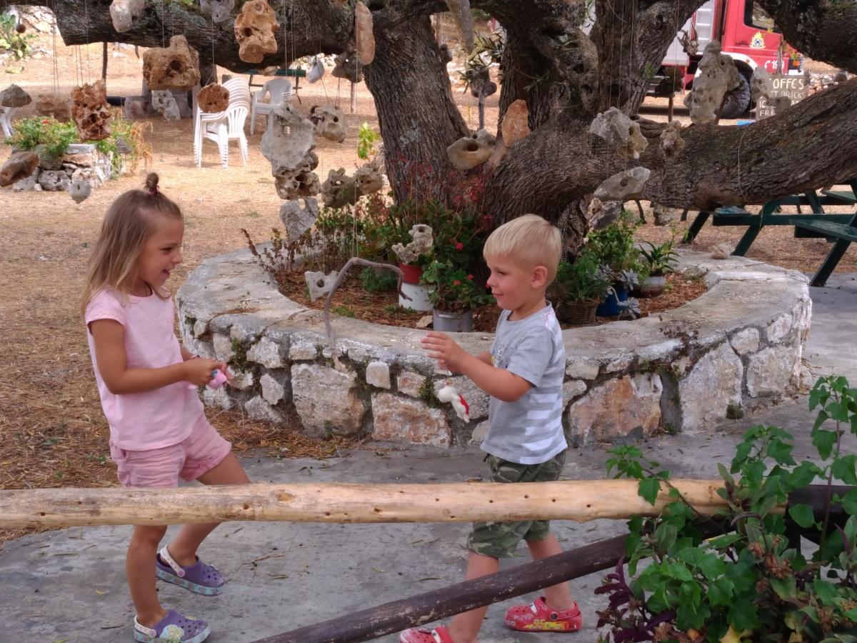 Рядом с увешанным комнями оливковым деревом
