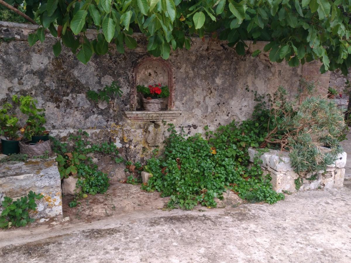 Цветочный горшок в стене