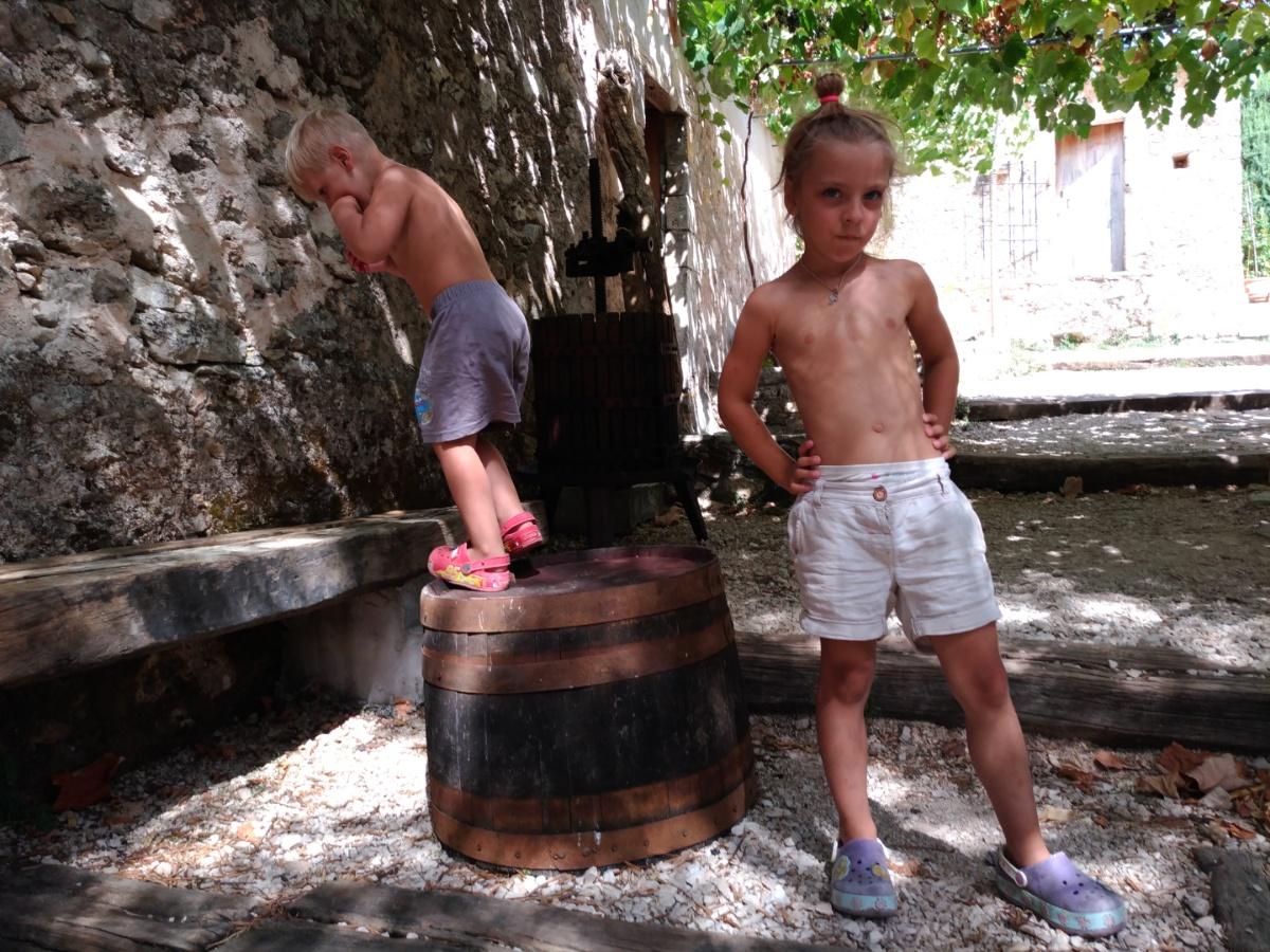 Под виноградными лозами в Art & wine winery