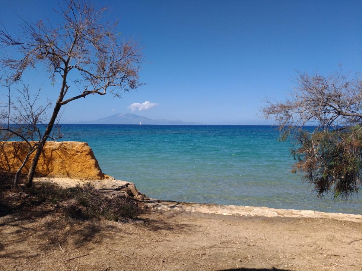 Вид на море с таверны Paradisos